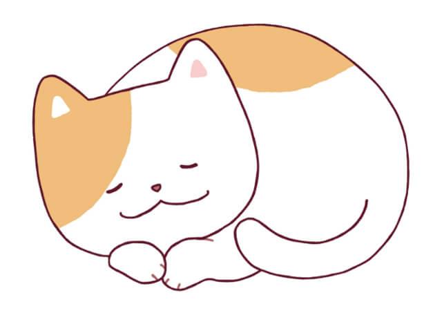 火葬・葬儀はペット(愛猫)とのお別れに大切な時間を提供する東京のキャットPaPaへ~完全プライベートでゆっくりと猫ちゃんのお別れを~