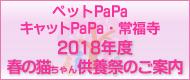 ペットPaPa・キャットPaPa・常福寺 2017年度 春の猫ちゃん供養祭のご報告