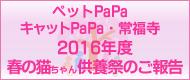 ペットPaPa・キャットPaPa・常福寺 2016年度 春の猫ちゃん供養祭のご報告